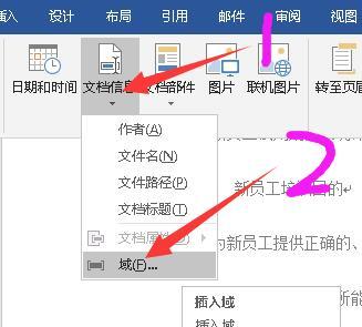 文档信息-域